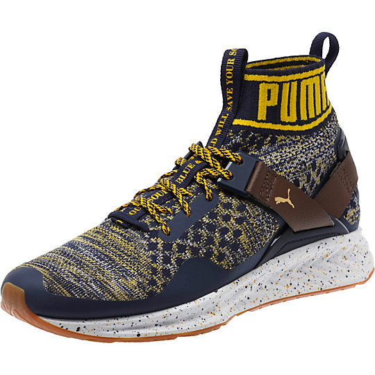 Puma Legacy Collection IGNITE evoKNIT Men's Training Shoes - Click Image to Close